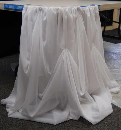 SK1. Fancy Sheer Skirt